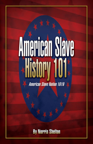 American Slave History 101 by Norris Shelton